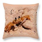St. Lucia Crab On Beach Throw Pillow