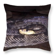 St. Lucia Pit Viper Throw Pillow