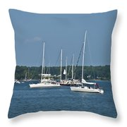 St. Mary's River Throw Pillow