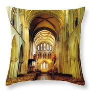 St. Patricks Cathedral, Dublin, Ireland Throw Pillow