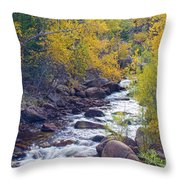 St Vrain Canyon And River Autumn Season Boulder County Colorado Throw Pillow