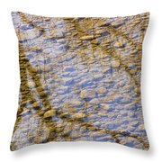 St Vrain River Reflection Throw Pillow