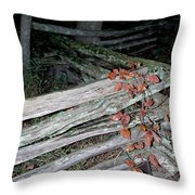 stacked Fence Throw Pillow