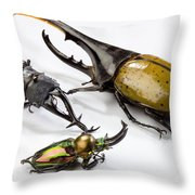 Stag Beetles Throw Pillow