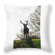 Stag On Hillside Throw Pillow