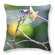Stained Glass Inspiration Feminine Throw Pillow
