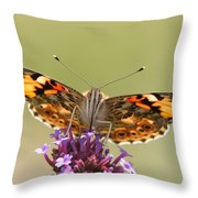 Stained Glass Lady Throw Pillow
