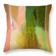 Stained Glass Shower Throw Pillow