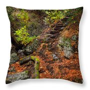 Stairway To The Sky Throw Pillow