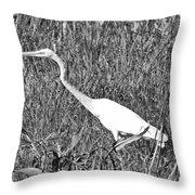 Stalking Egret Throw Pillow