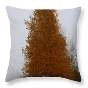 Stand Tall Big Tree Throw Pillow