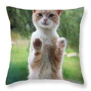 Standing Cat Throw Pillow