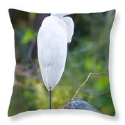 Standing Egret Throw Pillow