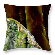 Standing In The Wings Throw Pillow