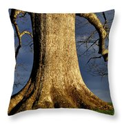 Standing Strong Oak Tree And Storm Clouds Throw Pillow