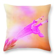 Standout Throw Pillow
