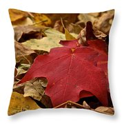 Standouts Throw Pillow
