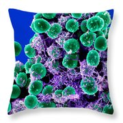 Staphylococcus Epidermidis Bacteria, Sem Throw Pillow
