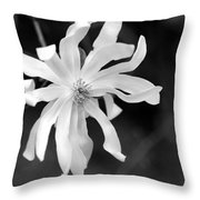 Star Magnolia Throw Pillow by Lisa Phillips