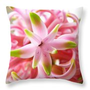 Star Of The Show Hyacinth  Throw Pillow