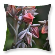 Star Succulents Throw Pillow
