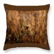 Star Thistle Throw Pillow