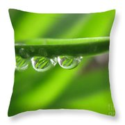 Stationary Throw Pillow
