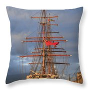 Stavros S Niarchos Throw Pillow
