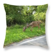 Stay Off The Road Bambi Throw Pillow