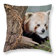 Stealthy Red Panda Throw Pillow
