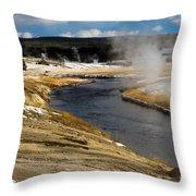 Steam Heating Throw Pillow