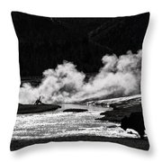 Steaming Bison Throw Pillow