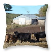 Steers Throw Pillow