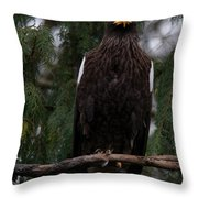 Steller's Sea Eagle Throw Pillow