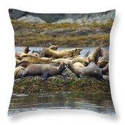 Stellers Sea Lion Eumetopias Jubatus Throw Pillow