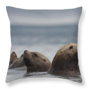 Stellers Sea Lion Eumetopias Jubatus Throw Pillow