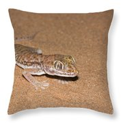 Stenodactylus Petrii Or Dune Gecko Throw Pillow