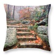 Steps Cloudland Canyon Throw Pillow