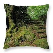 Steps In The Wild Garden, Galnleam Throw Pillow