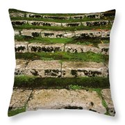 Steps On The Central Walk, Lismore Throw Pillow