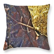 Stick Insect Throw Pillow