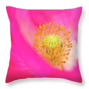 Stigma Throw Pillow
