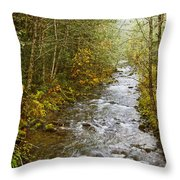Still Creek Throw Pillow
