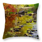 Still Golden Waters Throw Pillow