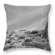 Still Standing 2012 Bw Throw Pillow