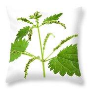 Stinging Nettle Throw Pillow