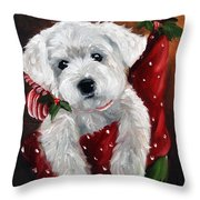 Stocking Stuffer Throw Pillow