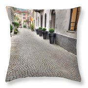 Stone Alley Throw Pillow