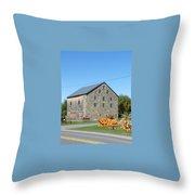Stone Barn Throw Pillow
