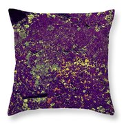 Stone Face At Hossa With Stone Age Paintings Throw Pillow